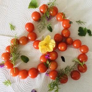 Tomatoes and Herb Link.  Judy Jordan