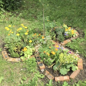 Living Link. Legion Hall Gardeners