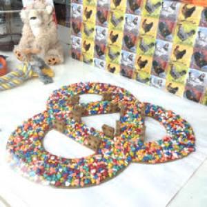 Healthy Pets - Biggar Links