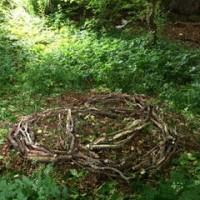 Art in the Woods - Group effort