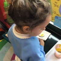 Biggar Nursery Photo 8