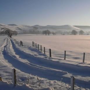 Hartree Hills from Hillridge Farm © Steve Blow